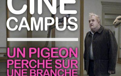 Ciné Campus #7 : « Un pigeon perché sur une branche philosophait sur l'existence » de Roy Andersson : Lundi 26 mars