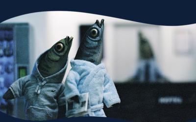 Cinéclub des Anémones #2 – Vendredi 30 novembre